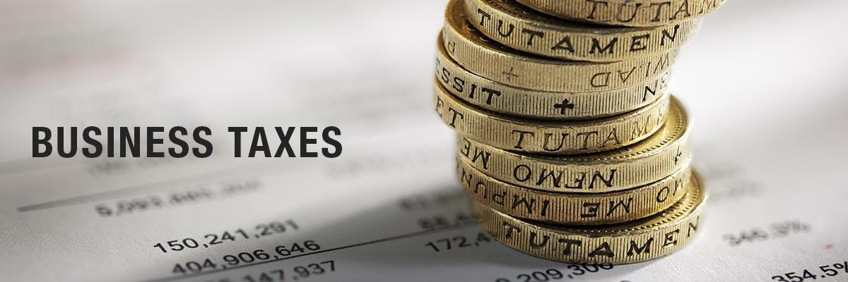 Business taxes biz4biz